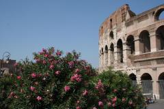 Italien Rom Koloseum